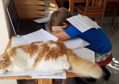 Benedikt Haimerl 5c mit Katze Romy