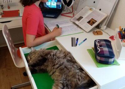 Maria Graf 6c mit Katze Lisa